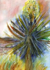 Soaptree Yucca Plant Yucca elata Davis Mountains State Park