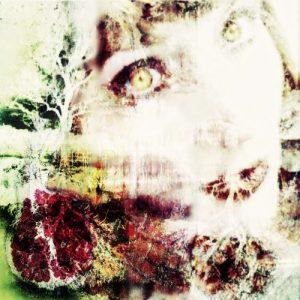Persephone dreams of the Pomegranate Digital Illustration
